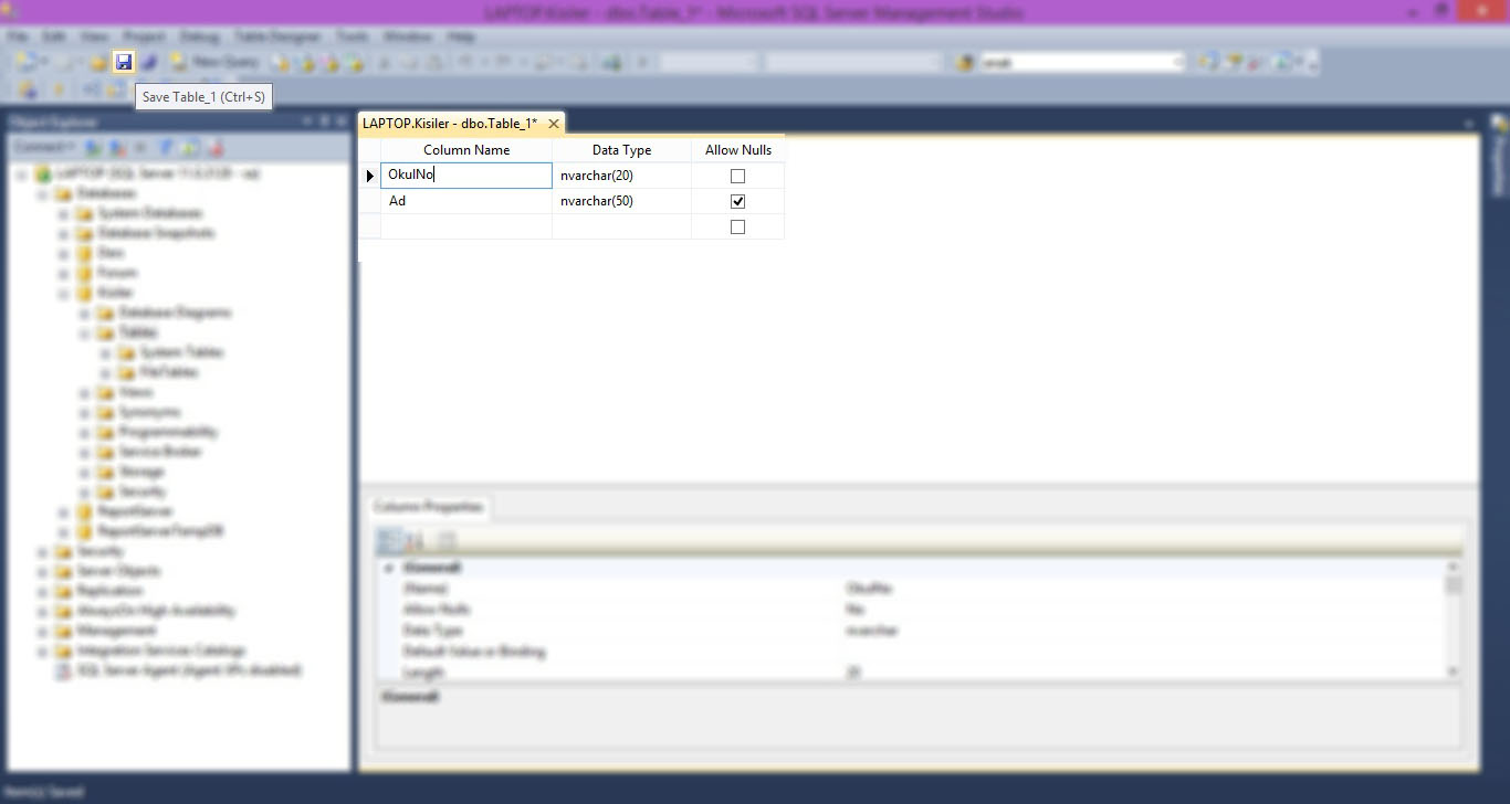 SQL Server Tablo Oluşturma-02