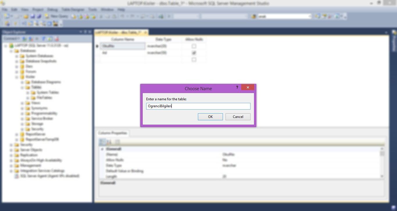 SQL Server Tablo Oluşturma-03