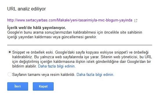 Url Analiz Ediliyor 1 - Google
