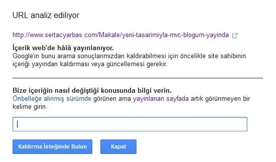 Url Analiz Ediliyor 2 - Google